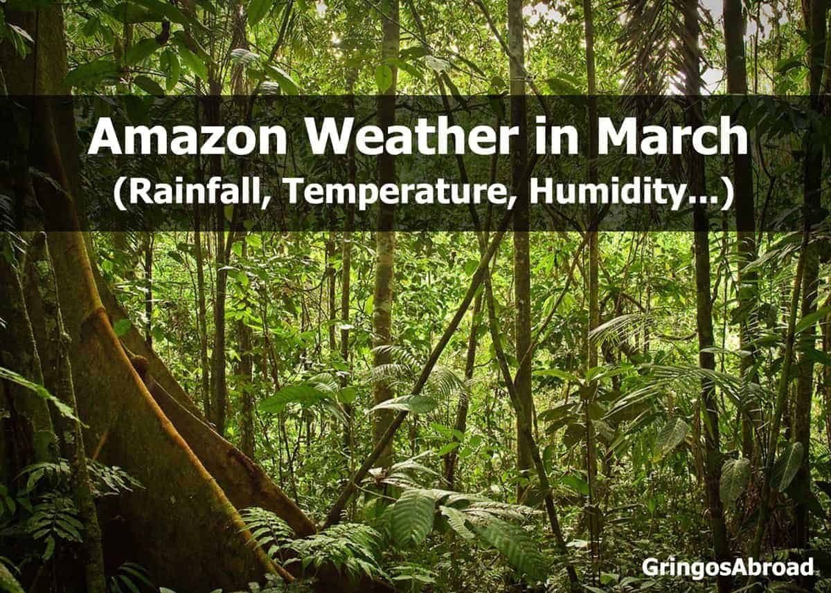 amazon weather in march