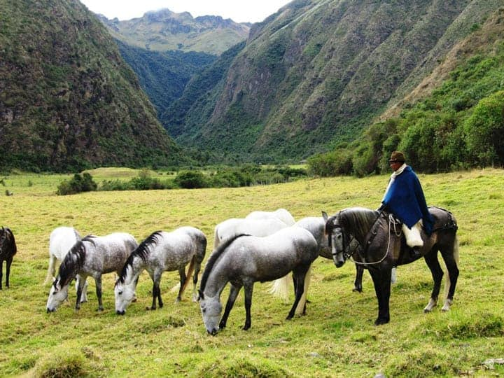 otavalo-ecuador-horse-ownership-andes