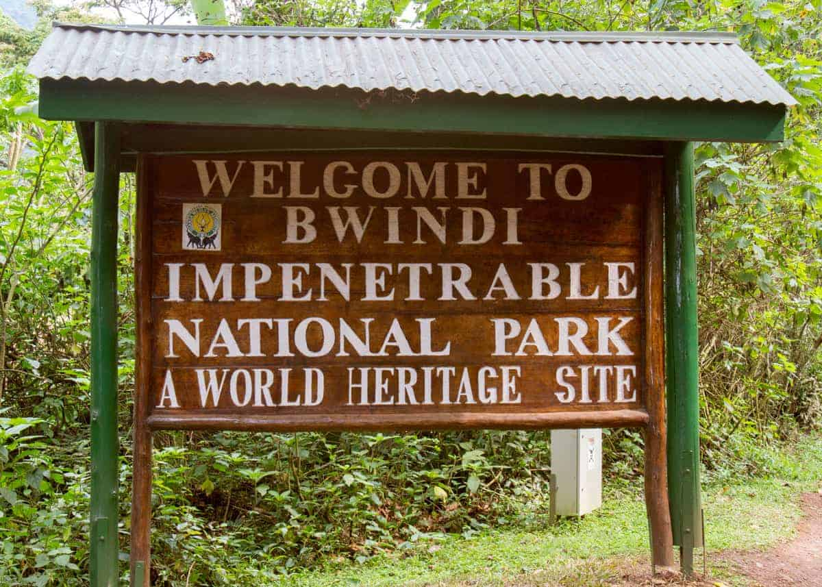 Bwindi Impenetrable National Forest Uganda